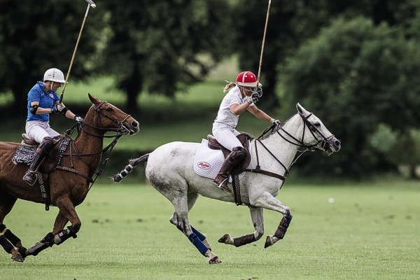 profesjonalne biustonosze sportowe Anita - doskonałe do jazdy konnej